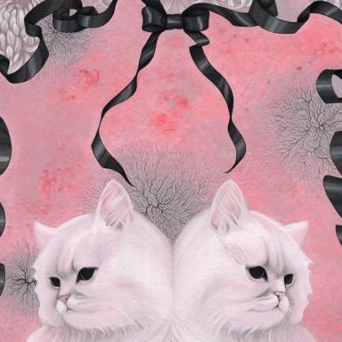 ペルシャ猫 / Persian Catの画像